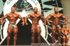 Alves_-_Anthony_-_Levrone.jpg