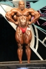 Ronnie_Coleman_-_Dorso_Frontale.jpg