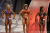 confronto-mrs-olympia-2006_2_.jpg