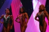 arnold2007-womenfigurefinals019.jpg