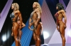 arnold2007-womenfigurefinals023.jpg