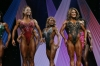 arnold2007-womenfigurefinals029.jpg