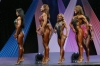 arnold2007-womenfigurefinals030.jpg