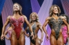 arnold2007-womenfigurefinals031.jpg