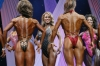 arnold2007-womenfigurefinals033.jpg